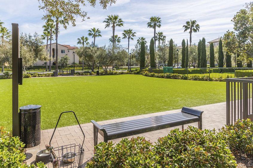 Exterior view of Dog Park at Los Olivos at Irvine Spectrum Apartment Homes in Irvine, CA.