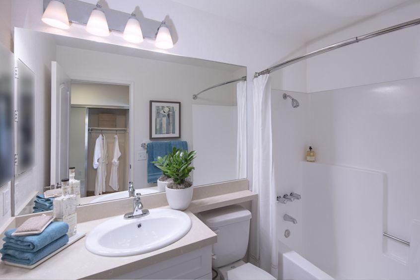 Interior view of bathroom at Northwood Park Apartment Homes in Irvine, CA.