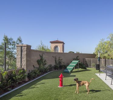 Exterior view of dog park at Portola Court Apartment Homes in Irvine, CA.