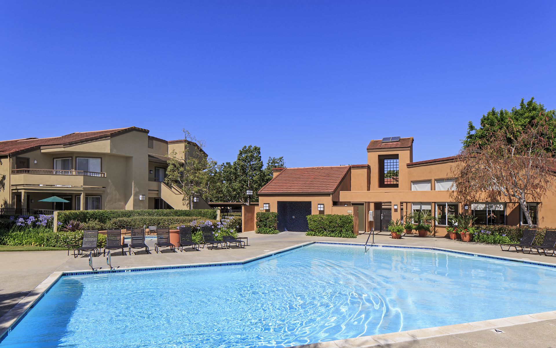 View of pool area at Harvard Court Apartment Homes at University Town Center in Irvine, CA.
