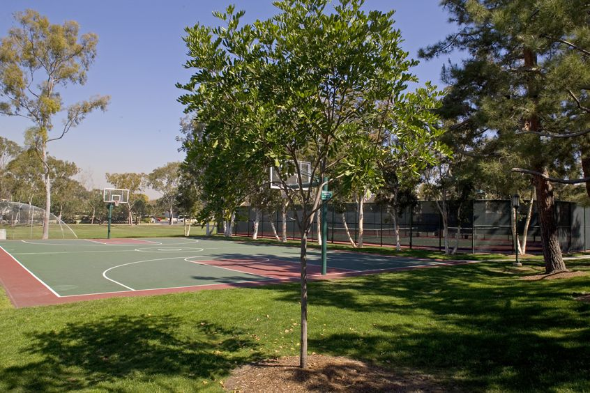 Basketball and tennis court at Harvard Court Apartment Homes at University Town Center in Irvine, CA.