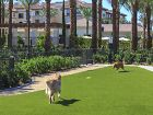 Dog park at Amalfi Apartment Homes in Tustin, CA.