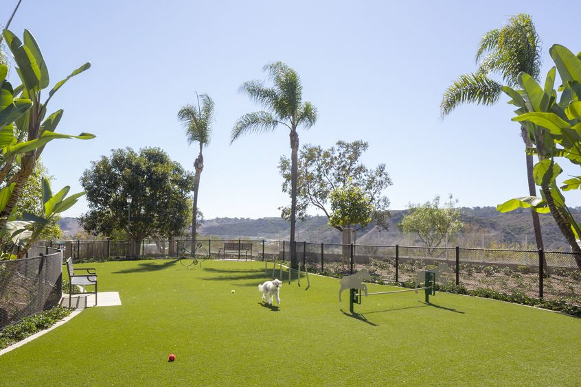 View of dog park at Torrey Villas Apartment Homes in San Diego, CA.