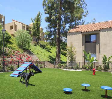 Exterior view of dog park at Westwood Apartment Homes in San Diego, CA.