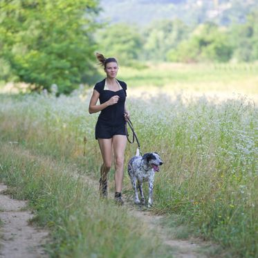 Dogs on leash runs between nature with its proprietary