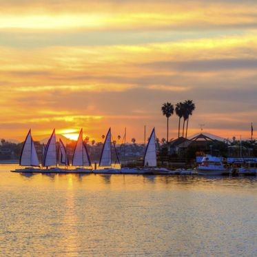The sunrise over Sail bay in Mission Bay over the Pacific beach in San Diego, California in the United States of America. A view of the palm trees, sail boats and beautiful saltwater bay at sunset.