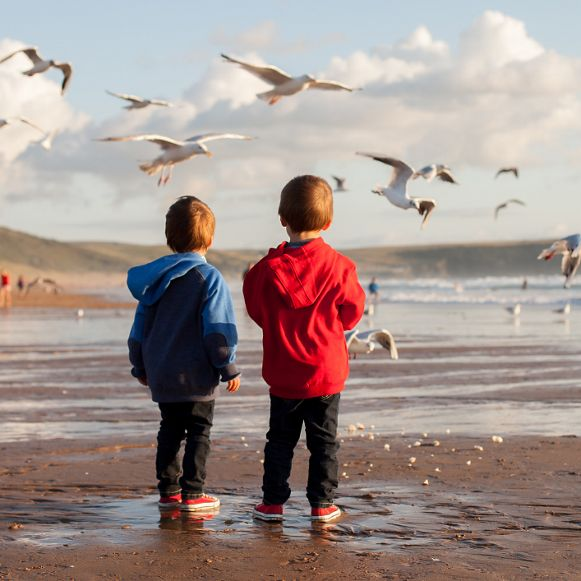 Two adorable kids, feeding the seagulls on the beach, sunset time
