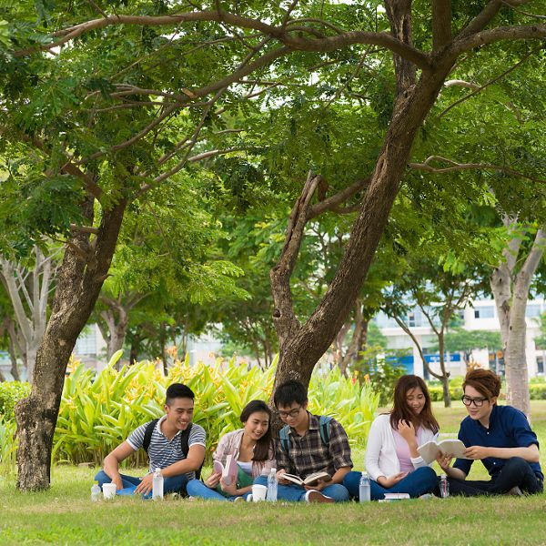 Vietnamese students sitting in the park and studying together