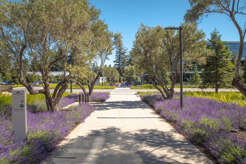 Exterior view of Pathline Park in Sunnyvale, CA.